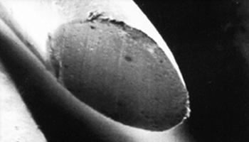 carecut-unter-dem-mikroskop-ergebnis
